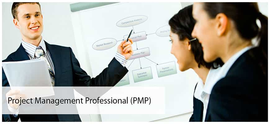 pmp_page_c